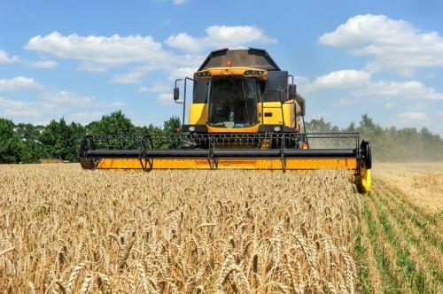 В республике продолжается уборка зерновых культур