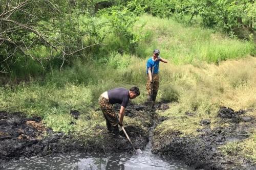 В Аршанском сосновом бору идет  восстановление природного источника