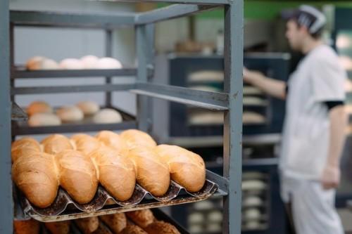 Предприятия мукомольной и хлебопекарной промышленности Калмыкии получат господдержку