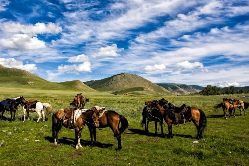 Внутренняя Монголия наполнит Вас невероятной внутренней энергией!