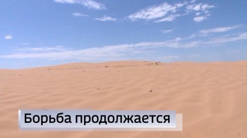 Сегодня Всемирный День борьбы с опустыниванием и засухой