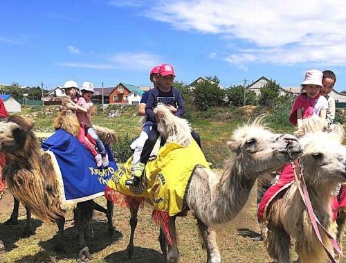В Республиканском центре социального обслуживания населения открылся лагерь дневного пребывания «Смышленный верблюжонок»