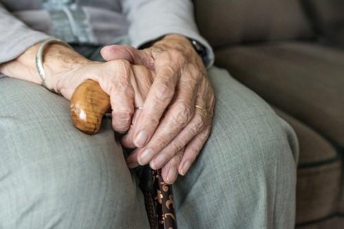 Для представителей старшего поколения и маломобильных групп населения действует бесплатная горячая линия