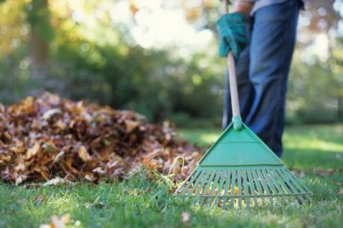 «Чистый дом» и «Чистый двор». В Калмыкии стартовала акция помощи пожилым людям