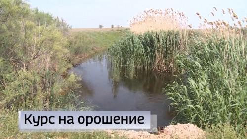 В нескольких хозяйствах Калмыкии уже приступили к страде