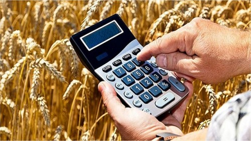 Штраф 20 000 рублей за неоплату труда назначили сельхозпредпринимателю из Калмыкии