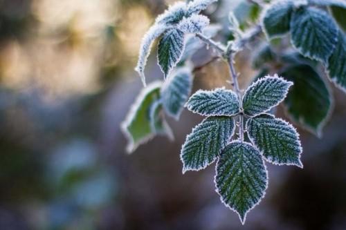 В регионе ожидается резкое похолодание