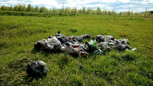 Каждый день сотрудники государственного заповедника «Черные земли» очищают от мусора его территорию