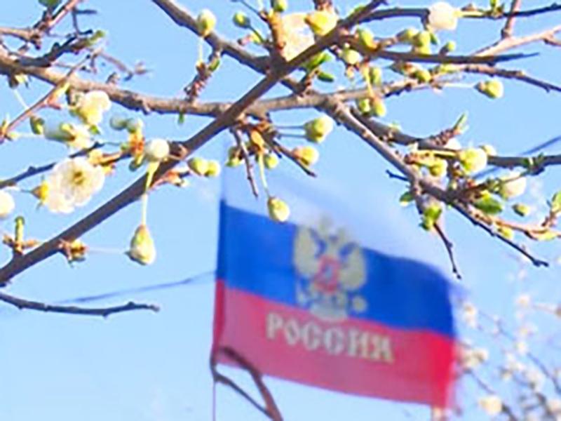 Госсовет Крыма принял конституцию республики