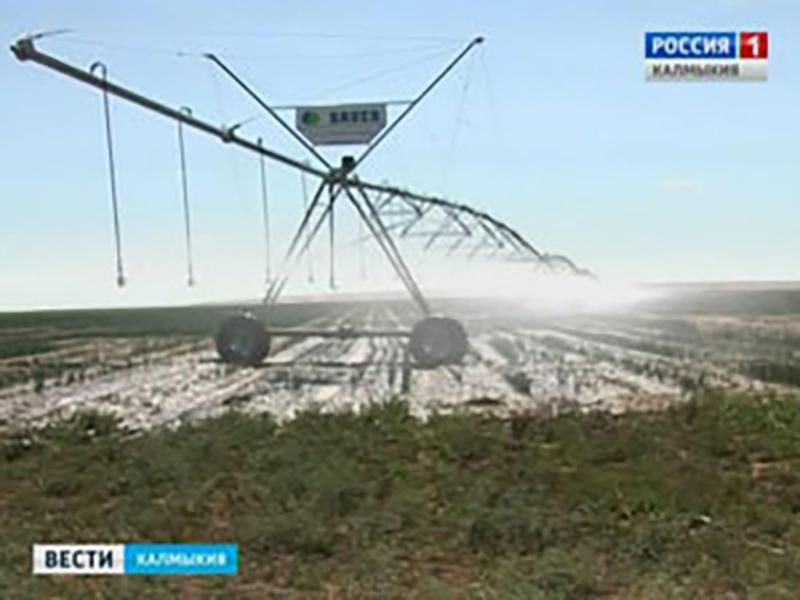 Увеличен объём субсидий на развитие растениеводства