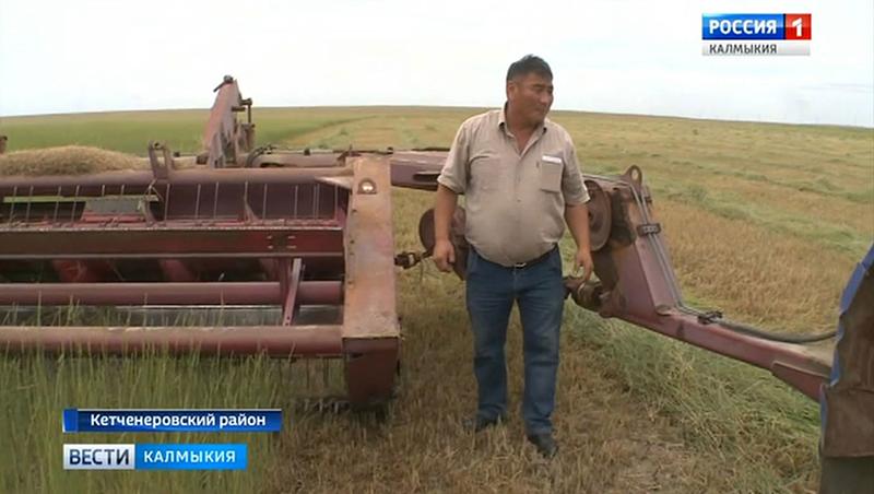 В сельхозпредприятиях продолжается кормозаготовка