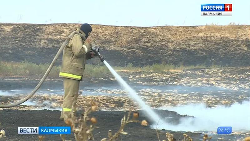 В восточной промзоне Элисты уже неделю горит степь