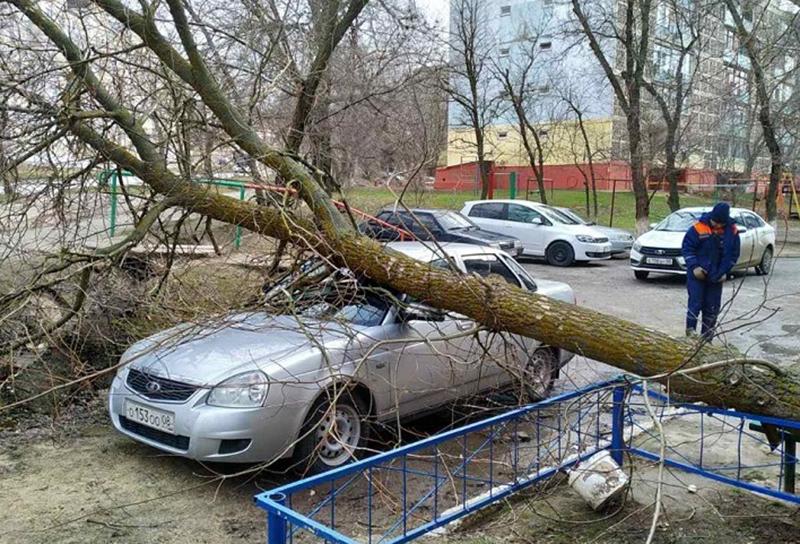 Сильный ветер стал причиной возникновения чрезвычайных ситуаций