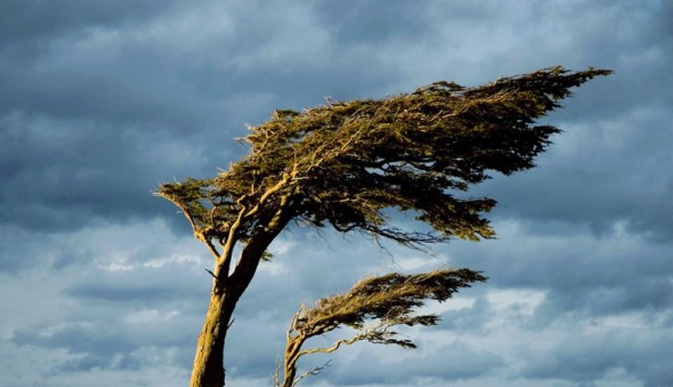 Два поселка Черноземельского района пострадали от стихии