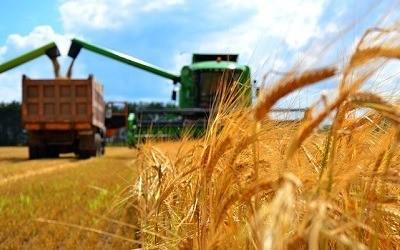 Агрострахование - залог стабильности всего сельскохозяйственного производства России