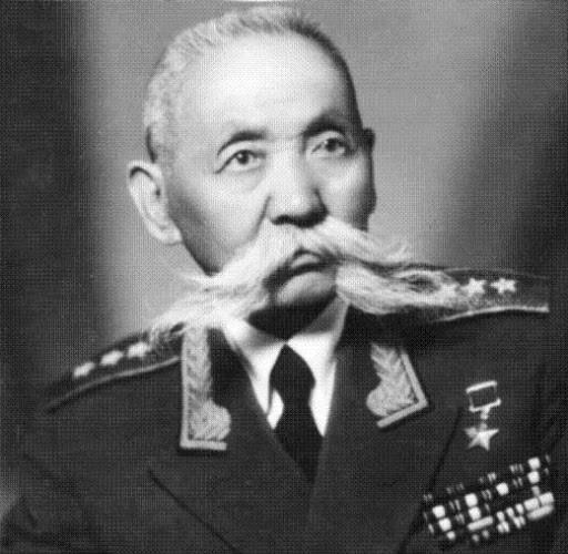 Сегодня 141 год со Дня Рождения Героя Советского Союза Ока Ивановича Городовикова