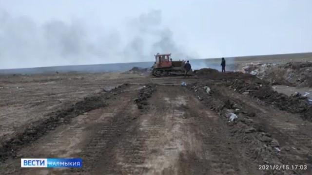 Останки сельхозживотных были обнаружены вблизи скотомогильника в районе поселка Алцынхута