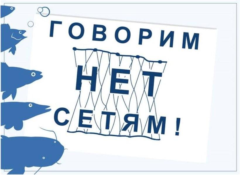 Продолжается ежегодная акция «Всероссийский день без сетей»