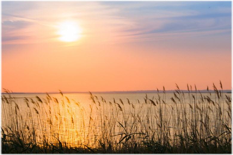 В Калмыкии завершается затопление лиманов