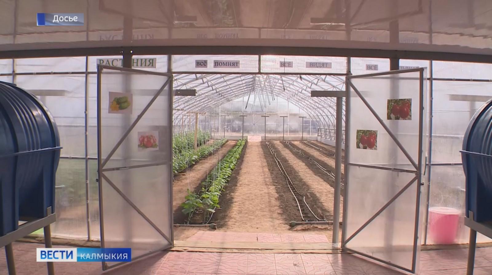 В северной промзоне Элисты появится агропромпарк площадью почти 100 тысяч квадратных метров
