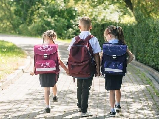 Региональные выплаты на детей школьного возраста из многодетных семей начнутся во второй половине августа