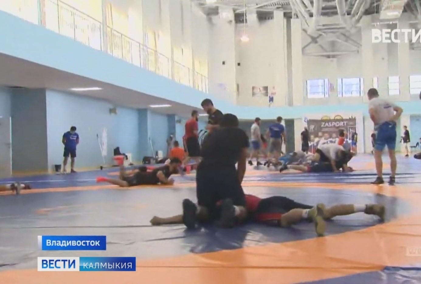 Сегодня в Токио отправилась команда России по греко-римской борьбе
