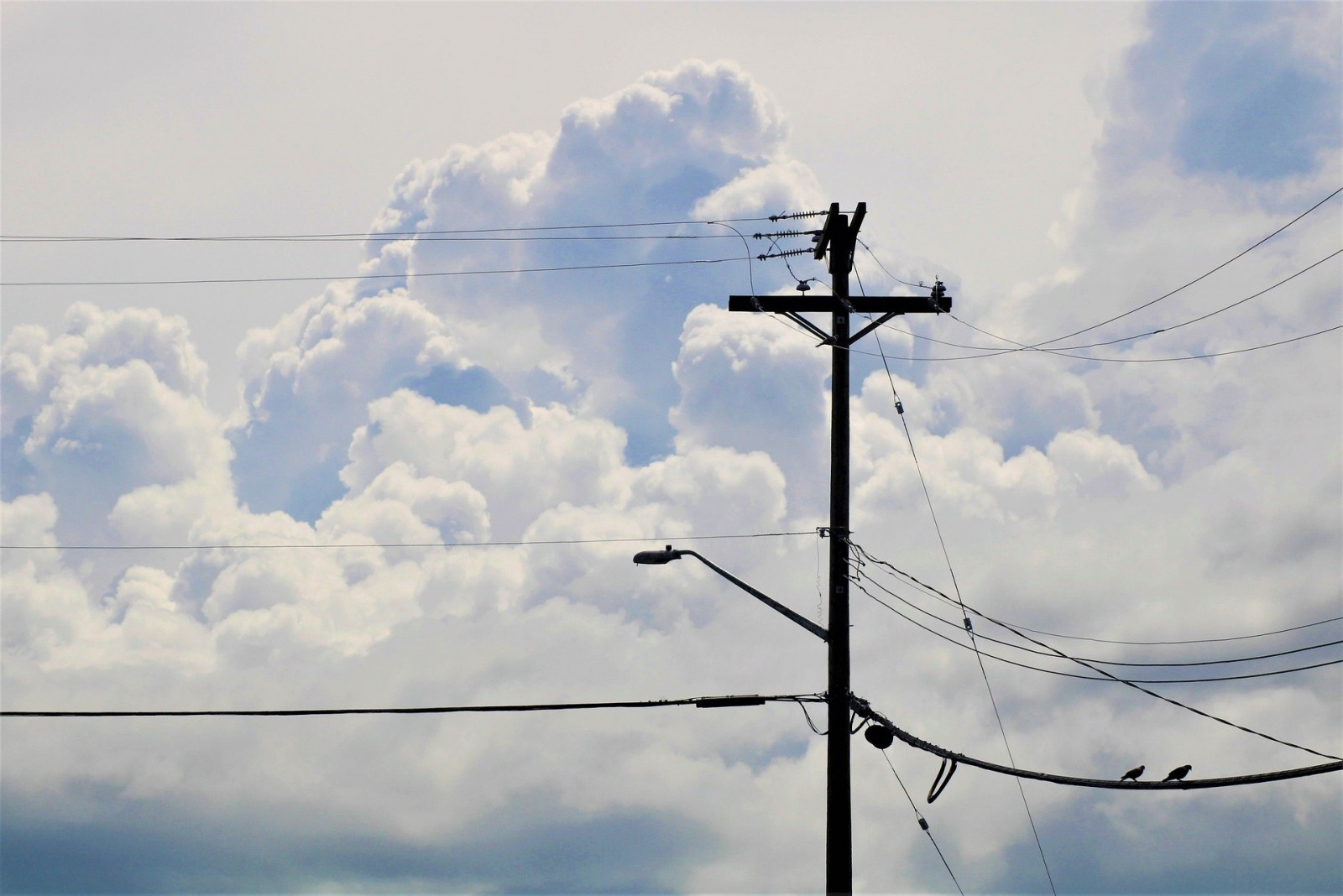С 1 августа в регионе поменяется поставщик электроэнергии