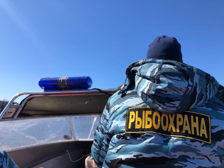 Сегодня профессиональный праздник отмечают сотрудники органов рыбоохраны
