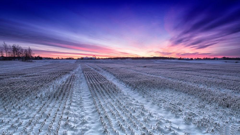 Погода в Калмыкии радует морозом и обильным снегом