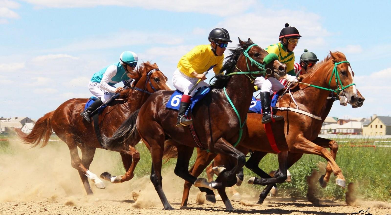 Сегодня в поселке Ергенинский большой конно-спортивный праздник